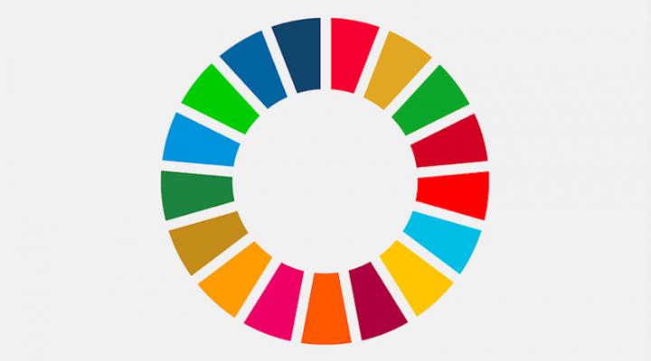 https://idgm.org/en/cycle-de-webinaires-financer-lagenda-2030-dans-un-monde-vulnerable/