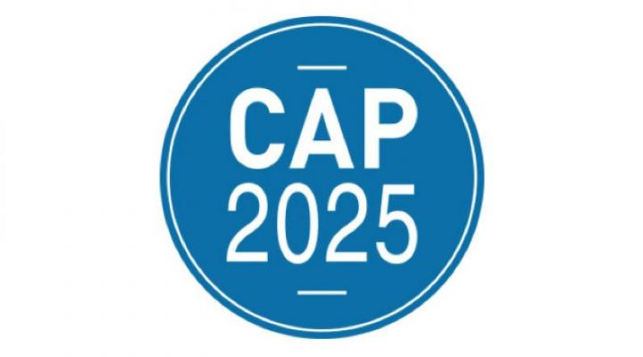 https://cap2025.fr/calls-for-projects/