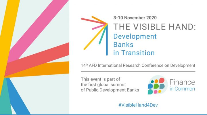 https://www.afd.fr/en/actualites/agenda/visible-hand-development-banks-transition?origin=/fr/actualites/agenda